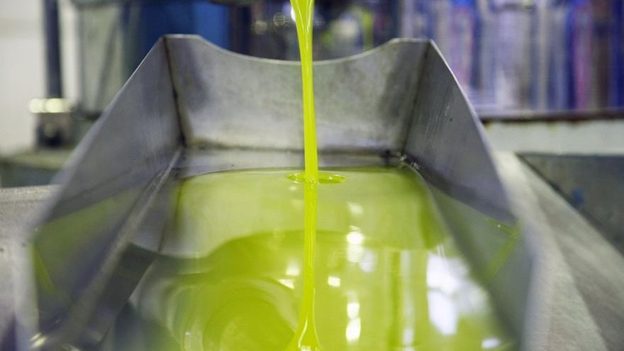 La producción de aceite de oliva en Andalucía se situará en 1,1 millones de toneladas, unas 542.000 serán de Jaén