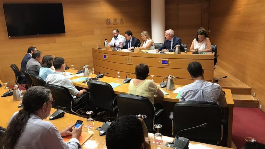 El director del IVF, Manuel Illueca, durante su comparecencia en las Corts.