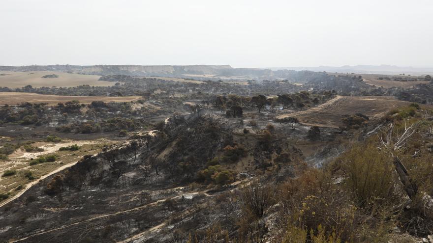 Incendios.- Bomberos prevén extinguir en próximas horas el fuego del Vedado (Navarra) si las condiciones lo permiten