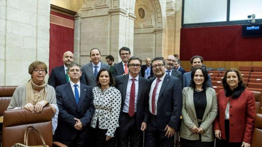 El grupo parlamentario de Vox en Andalucía, al poco de tomar posesión en la Cámara.