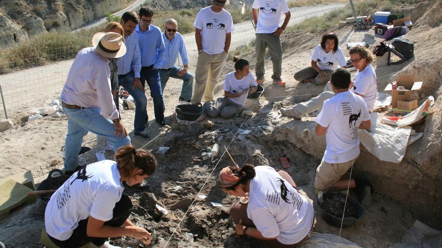 Fósiles de Baza muestran que en la zona vivieron animales como los mamuts hace cuatro millones de años