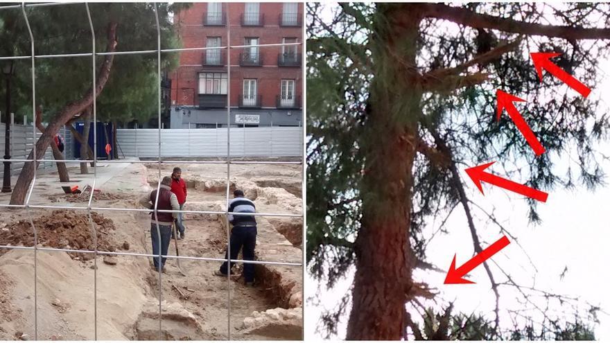 Obras del hotel y las ramas rotas de uno de los árboles dañados (pincha para ampliar)   SOMOS MALASAÑA