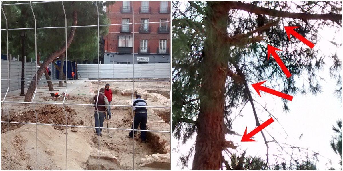 Obras del hotel y las ramas rotas de uno de los árboles dañados (pincha para ampliar) | SOMOS MALASAÑA