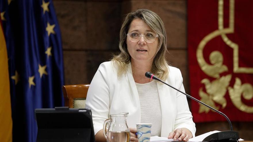 La consejera canaria de Agricultura, Ganadería y Pesca, Alicia Vanoostende, este miércoles en la comisión parlamentaria