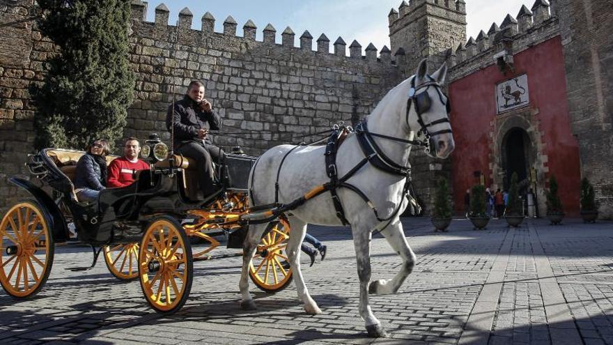 El Real Alcázar de Sevilla roza su máximo histórico de visitantes