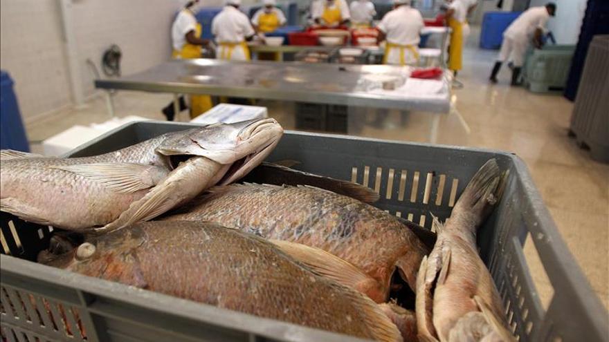 Colombia y Galicia incrementan su colaboración en materia pesquera
