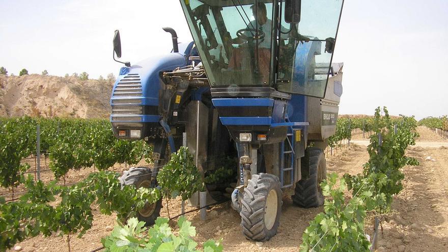 La renta agraria se sitúa en niveles de hace 20 años, pese a subir un 1,1% este año, según COAG