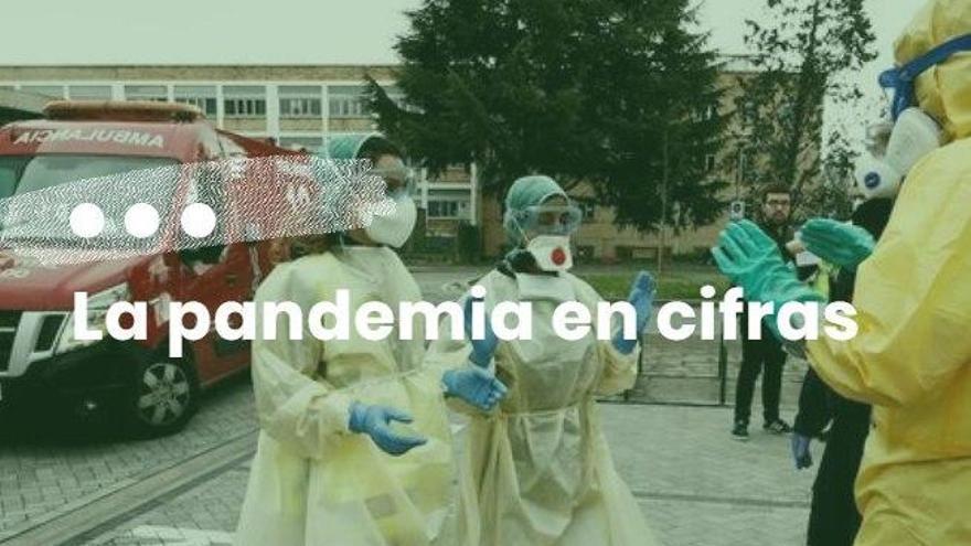 La pandemia en Navarra en cifras