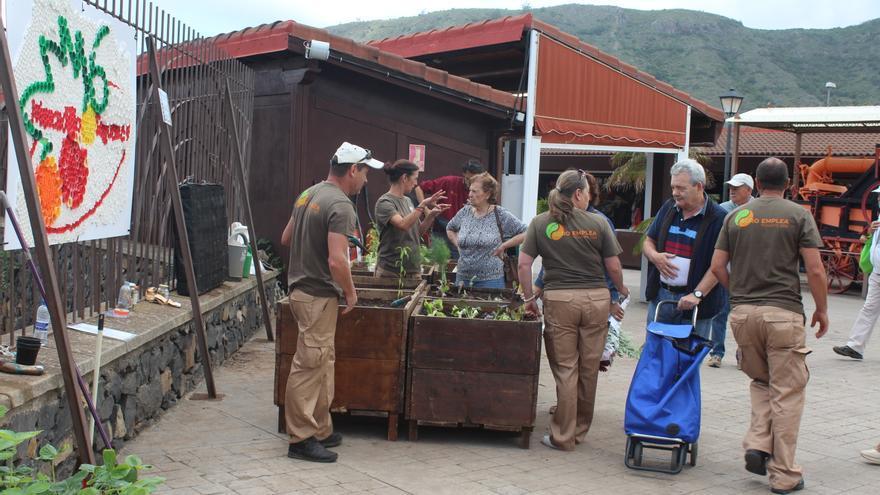 Imagen de la acción desarrollada este sábado en el Mercado del Agricultor de Tegueste