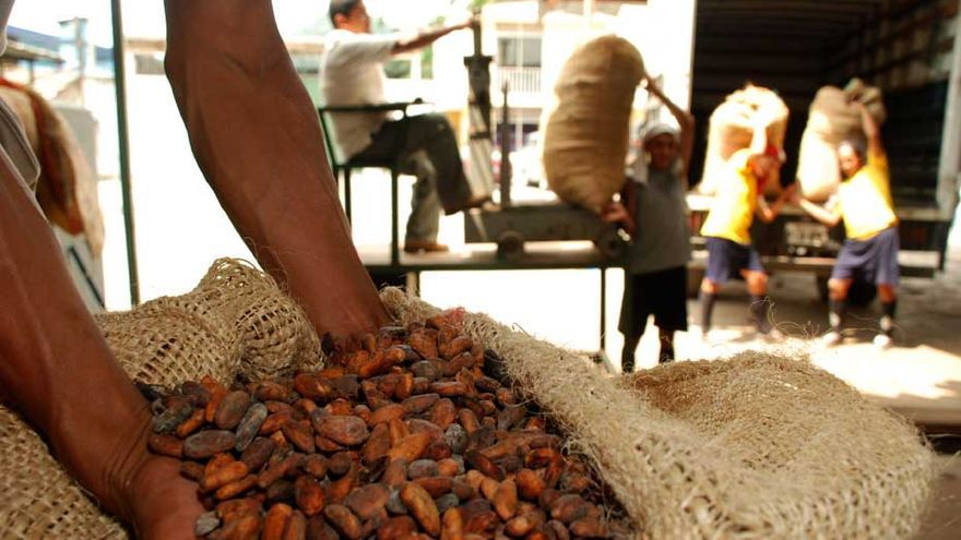 La organización Maquita Cuschuchunchic de Ecuador es una organización de comercio justo que produce cacao. Foto: IDEAS