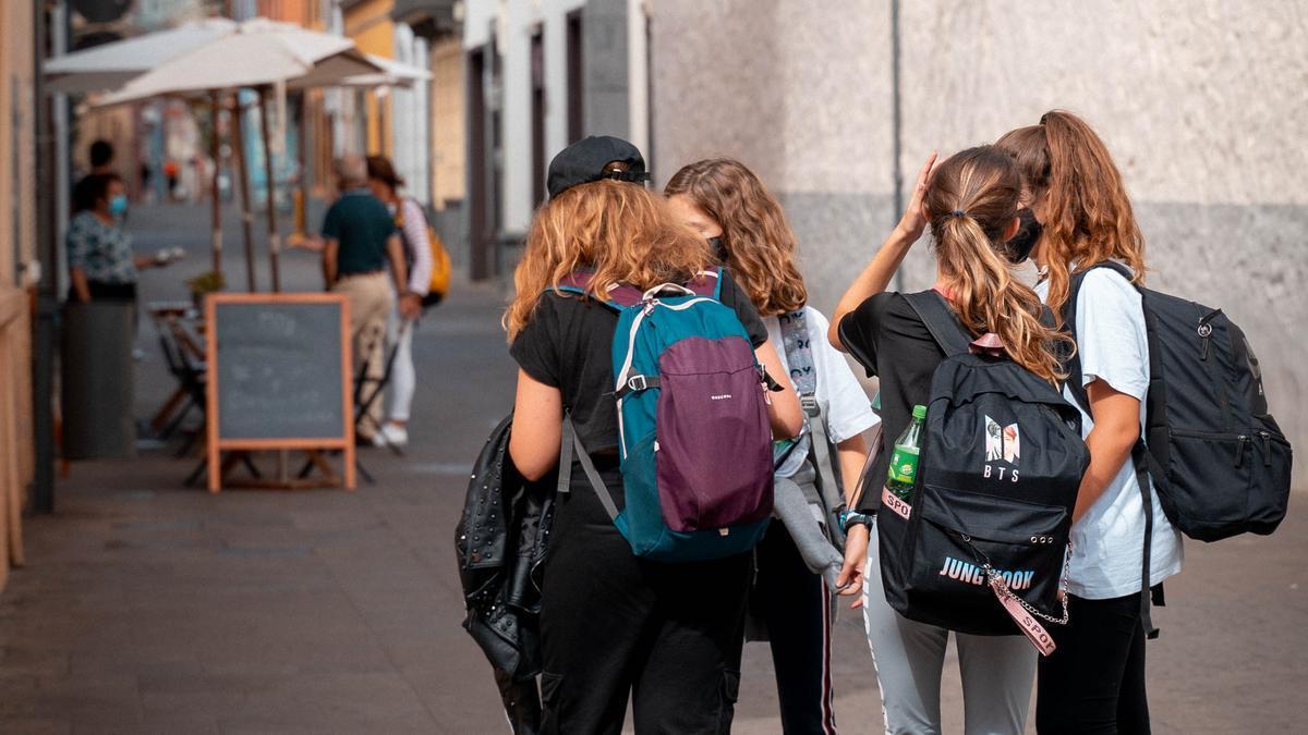 Grupo de estudiantes en La Laguna