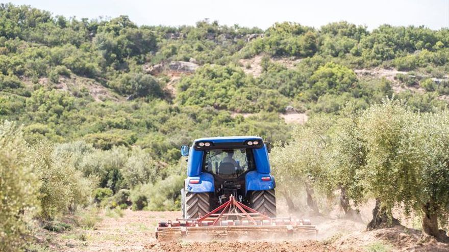 La CE amplía a 133 millones euros el presupuesto de 2017 para promoción agrícola