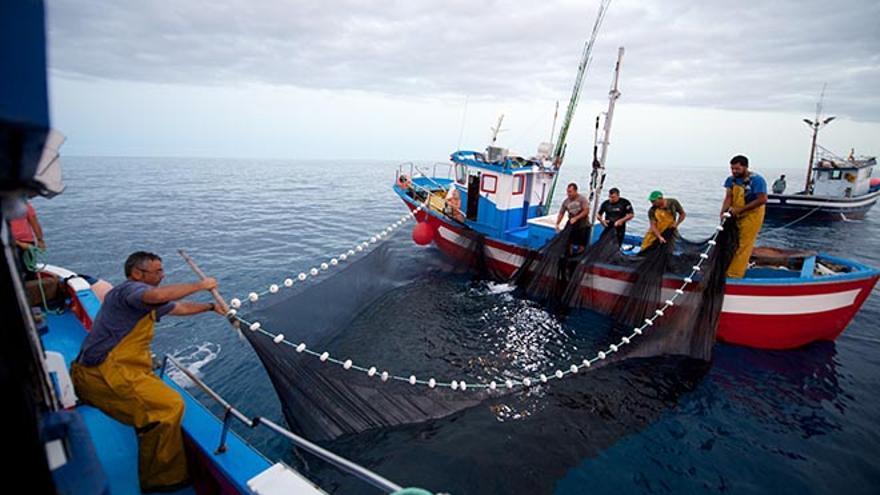 Pescadores de Fuerteventura. (CARLOS DE SÁA)