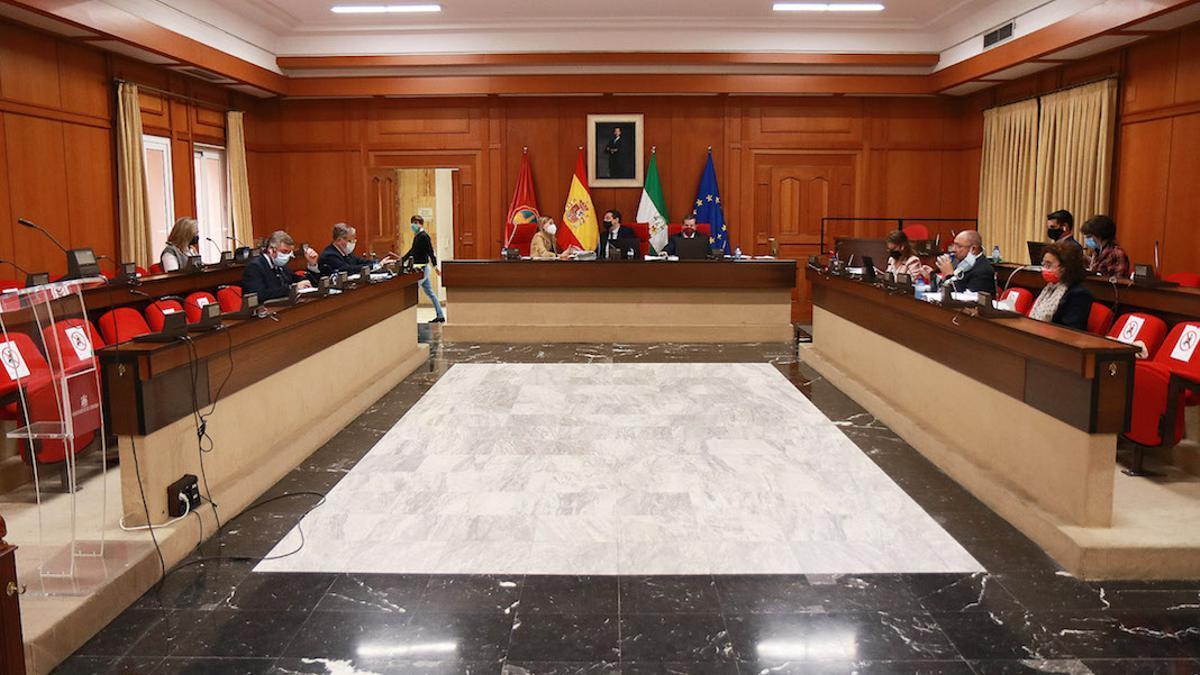 Panorámica del Pleno del Ayuntamiento