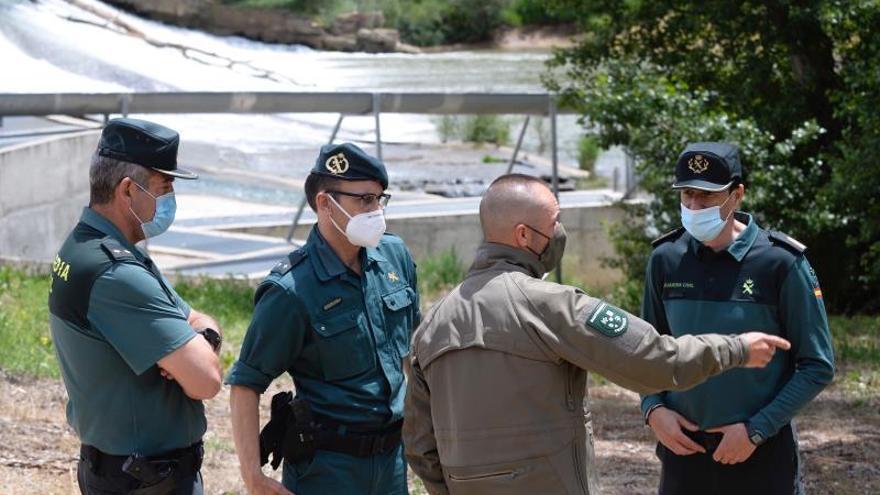 Buscan en 6 kilómetros del río al cocodrilo avistado en Simancas (Valladolid)