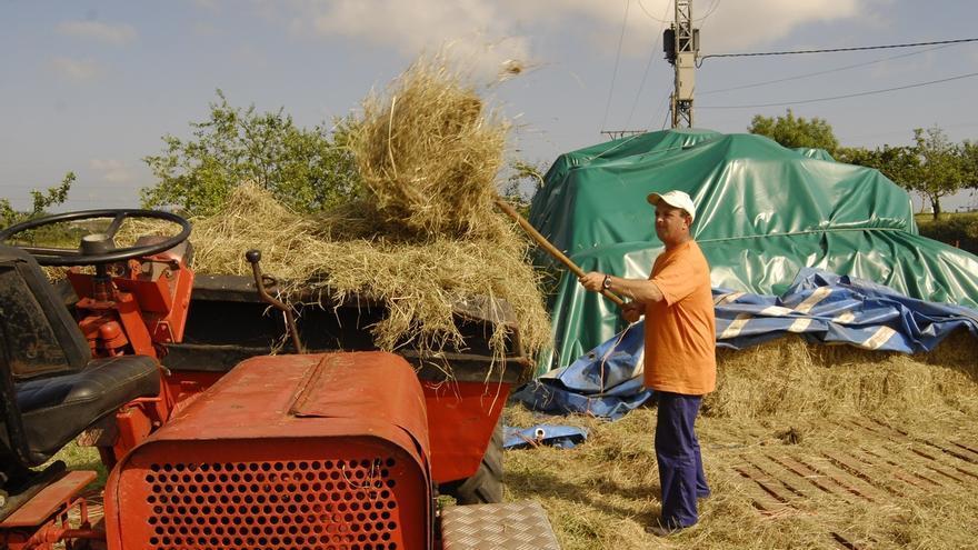 El Congreso pide al Gobierno que reduzca las peonadas para acceder al subsidio agrario en Andalucía