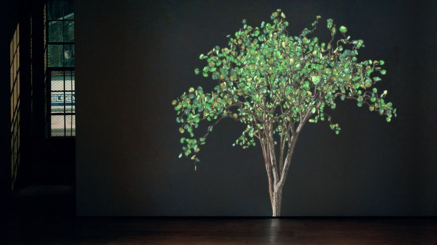 Exposición de Miami ilumina la conexión con la naturaleza durante la covid-19