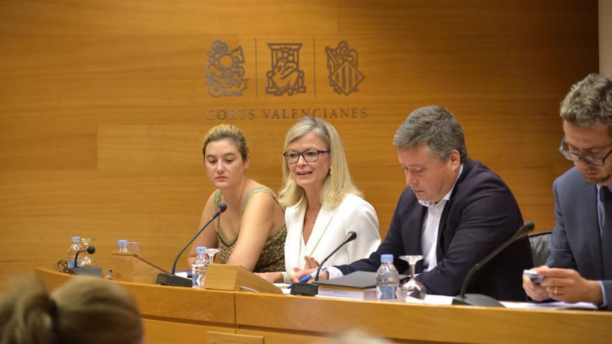Gabriela Bravo en la comisión de las Corts Valencianes.