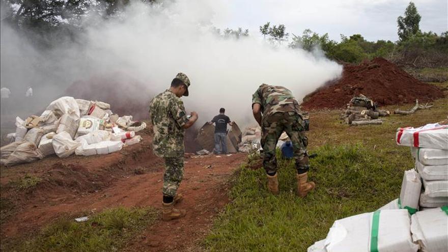 Paraguay destruyó 2.116 hectáreas de cultivos de marihuana en 2015