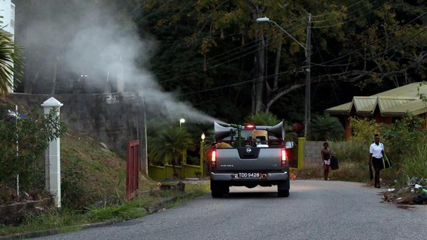 Greenpeace Suiza denuncia el nivel excesivo de pesticidas en los alimentos