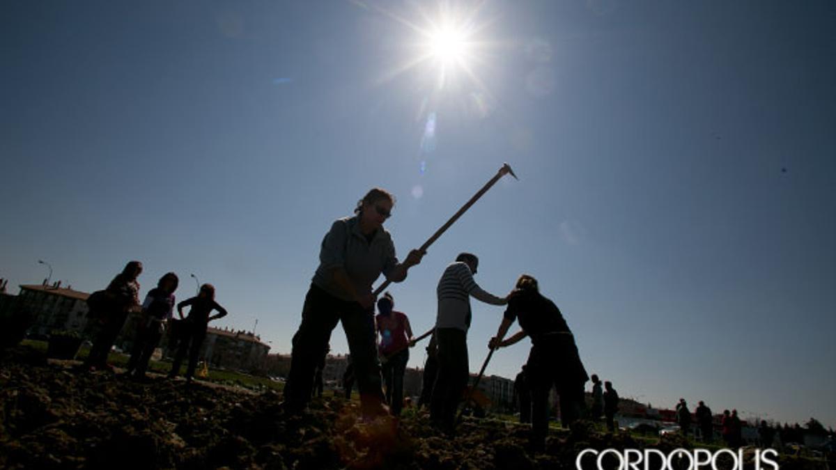 Imagen de archivo de un grupo de agricultores preparando la tierra