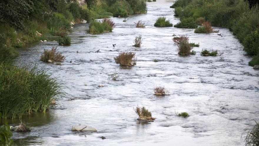 Tramo del río Manzanares cuando ya no está canalizado pasada la presa 9 en dirección al sur. / A. M.