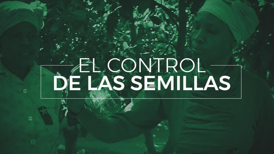 El control de las semillas