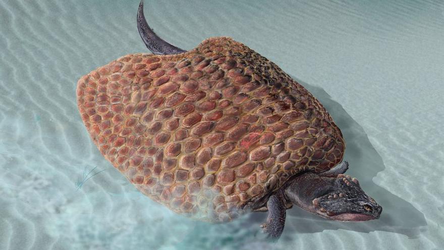 Así sería el placodonto, reptil marino que vivía en Guadalajara hace 235 millones de años
