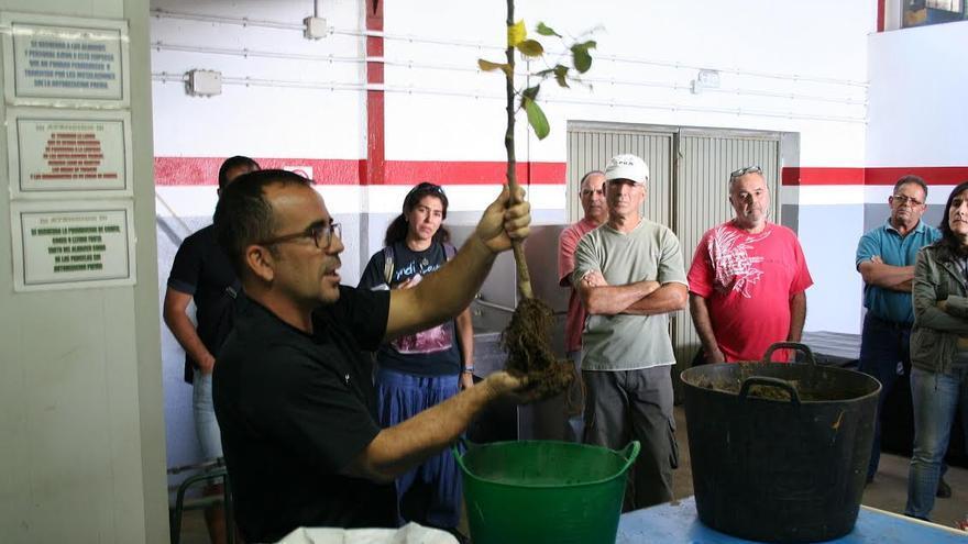 El encuentro de agricultores de la Isla que elaboran sus propios preparados fertilizantes o fitosanitarios se ha celebrado en la Escuela de Capacitación Agraria en Los Llanos de Aridane.