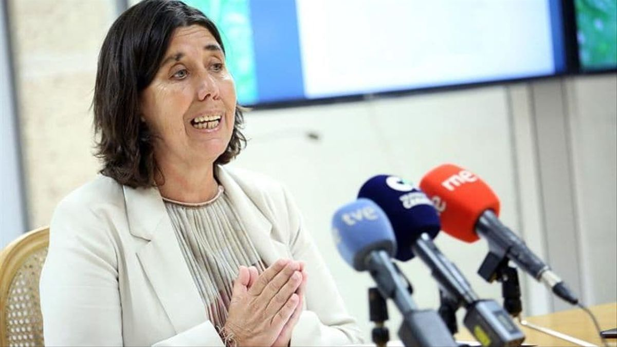 La consejera de Coalición Canaria Blanca Pérez