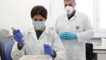 ¿Una segunda vida útil para los equipos de protección contra el virus? Canarias busca la solución en el ozono