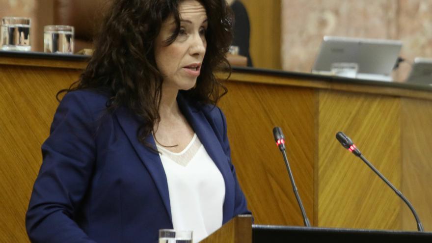 """Junta garantiza la seguridad de MENA en Macarena y hará acciones con vecinos para que """"conozcan su realidad"""""""