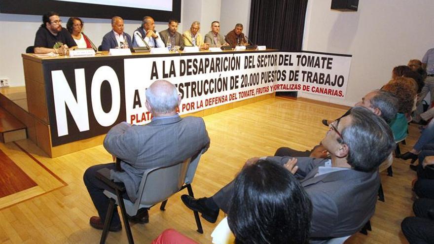 Las dos asociaciones de exportadores de hortalizas en Canarias, Fedex (Las Pamas) y Aceto (Santa Cruz de Tenerife), la agrupación agraria ASAJA y los sindicatos CCOO e Intersindical, entre otros, presentaron hoy una plataforma en defensa del sector del tomate