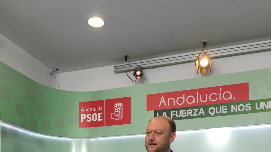 """El PSOE, convencido de que el sobreseimiento a García Pelayo es """"un punto y seguido"""" y no """"un punto y final"""""""