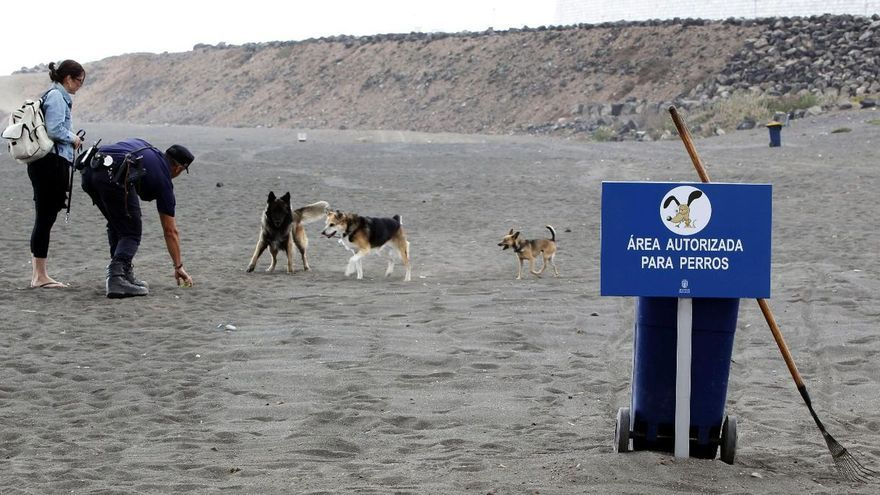 La playa de Bocabarranco, en Gran Canaria, fue el primer espacio pet-friendly de Canarias. EFE