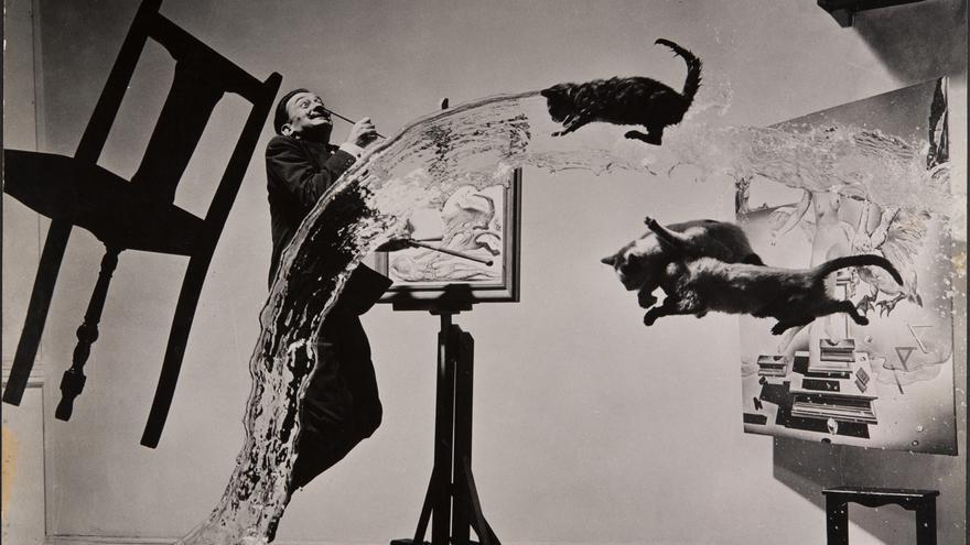 philippe-halsman-dali-atomicus-1948-musee-de-l-elysee-c-2016-philippe-halsman-archive-magnum-photos-exclusive-rights-fo.jpg