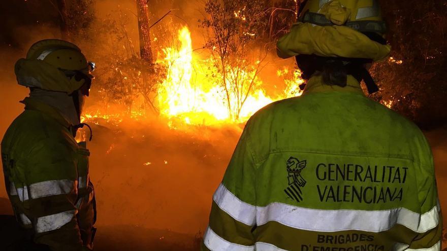 Efectivos de las brigadas forestales de la Generalitat Valenciana trabajan en las tareas de extinción del incendio de Carcaixent