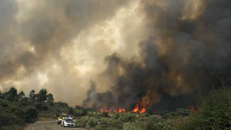 El incendio en Arribes fue intencionado y ha calcinado 132 hectáreas