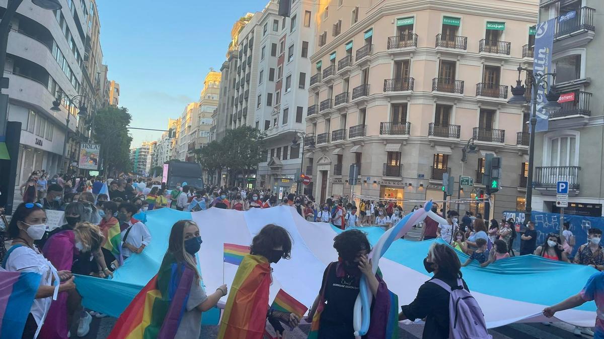 Manifestantes ondean una enorme bandera trans.
