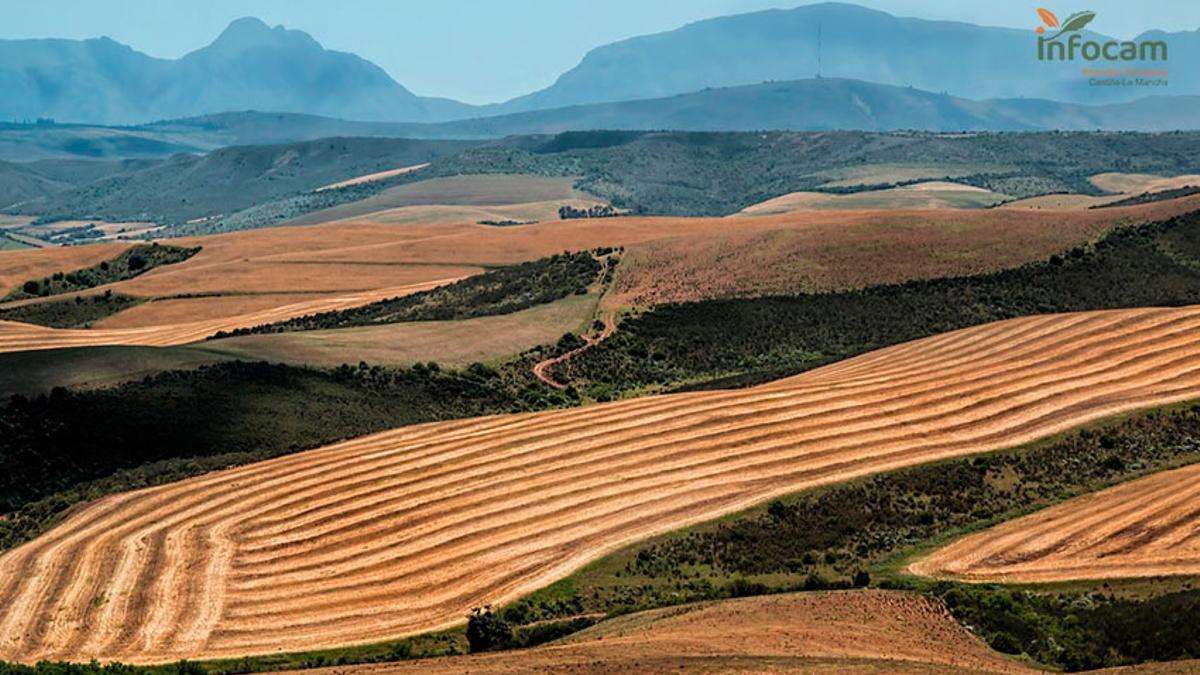 Medio natural Castilla-La Mancha