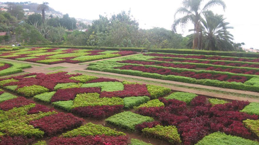 El Jardin Botánico (arriba), el campo anexo del Marítimo y Grisaleña cuando fue portero del Marítimo.