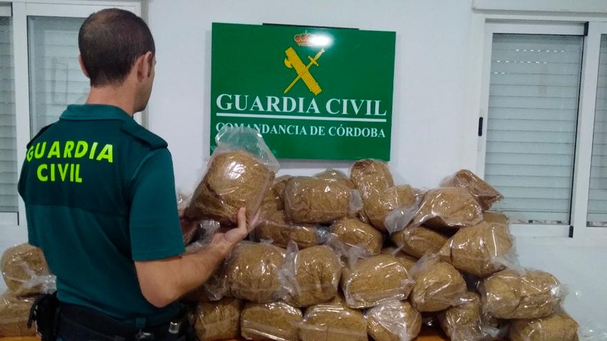Picadura de tabaco intervenida por la Guardia Civil.