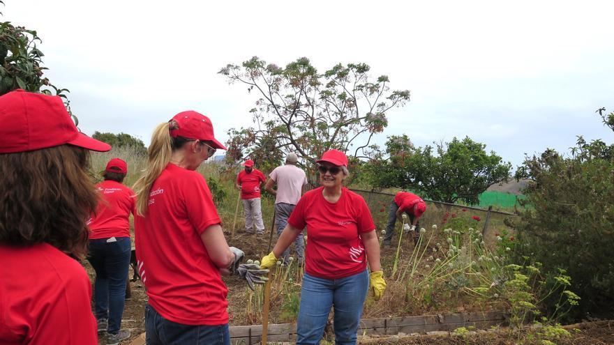Voluntarios de Cepsa en la Finca Berta