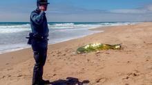 Imagen de archivo. Un agente de la Guardia Civil junto al cadáver de un joven cuyo cuerpo fue localizado el pasado mes de mayo.