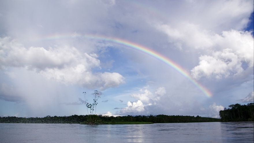 El Parque Nacional Yasuní, en la Amazonía ecuatoriana, ocupa 982.000 hectáreas./ YASunidos