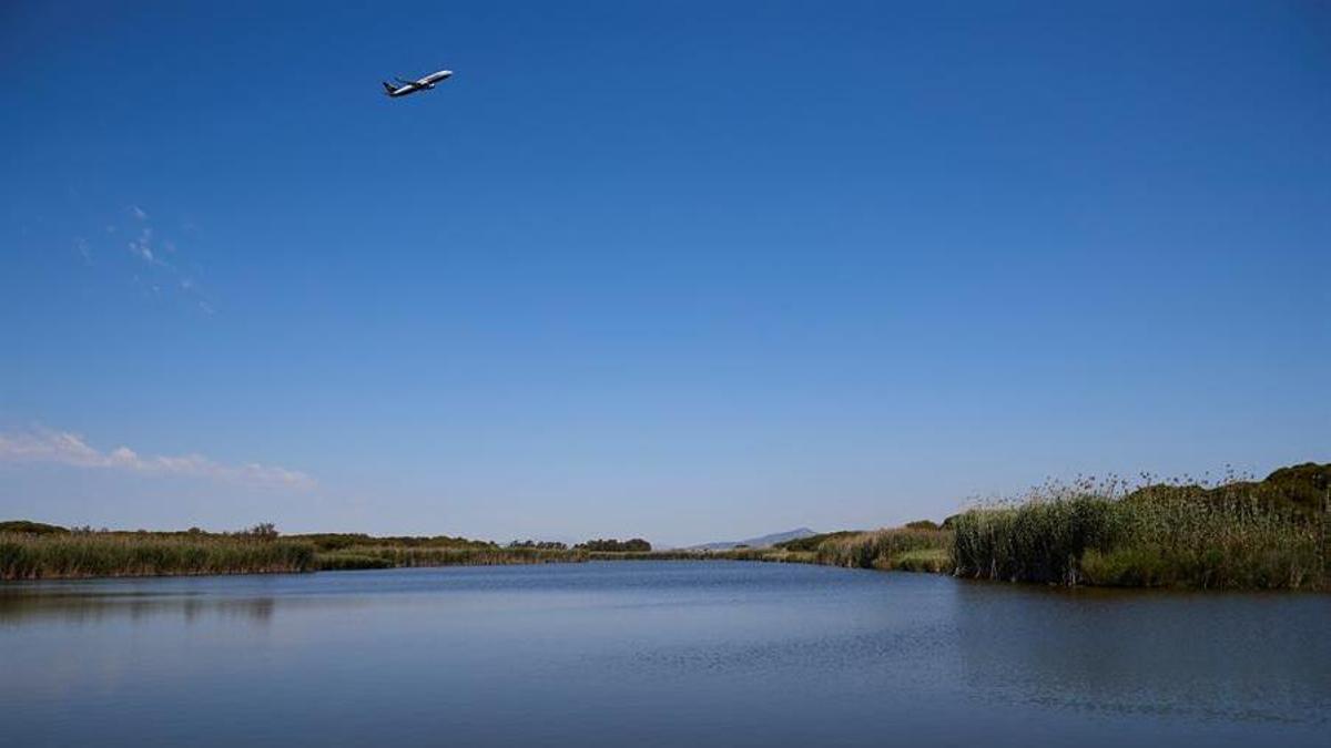 Un avión sobrevuela la laguna de La Ricarda