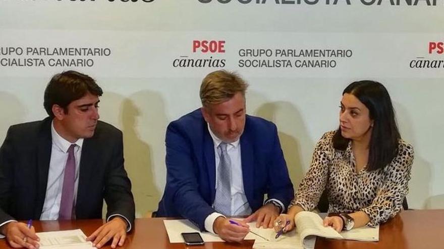 El PSOE apoya unas fiestas de la Bajada de la Virgen en 2021 adaptadas a la 'nueva normalidad'