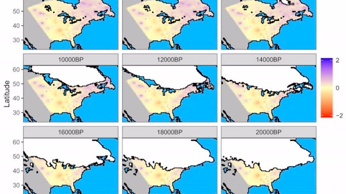 Mapa en el que se puede observar como ha cambiado la capa de hielo y las relaciones filogenéticas de las formaciones vegetales en Norte América desde el Último Máximo Glacial (hace 22.000 años) hasta la actualidad.