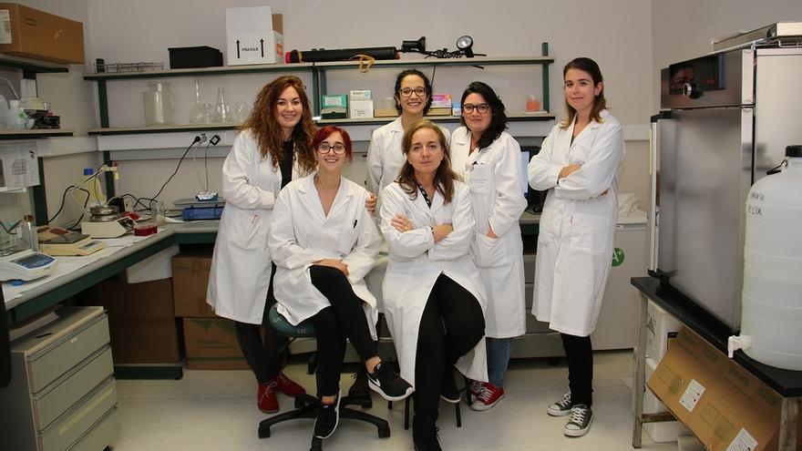 Investigadores de IDIVAL-UC patentan un sistema que mejora las terapias celulares dirigidas