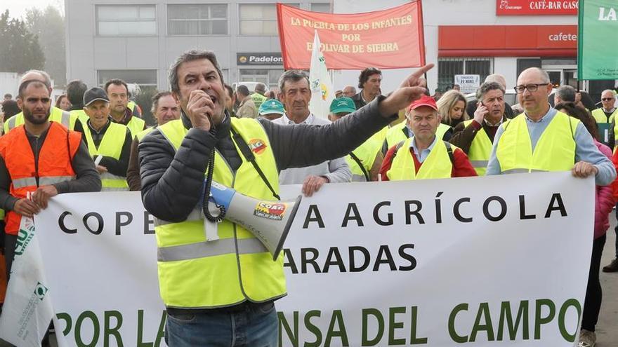 Agricultores de las principales organizaciones agrarias se movilizan en la localidad sevillana de Carmona
